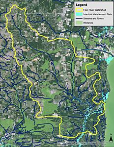 Area image